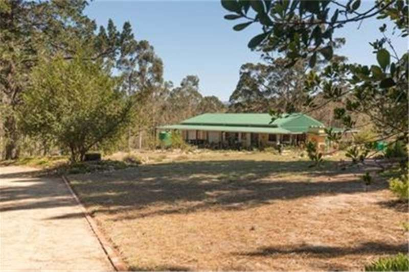 Property Farms Farm For Sale in SEDGEFIELD CENTRAL