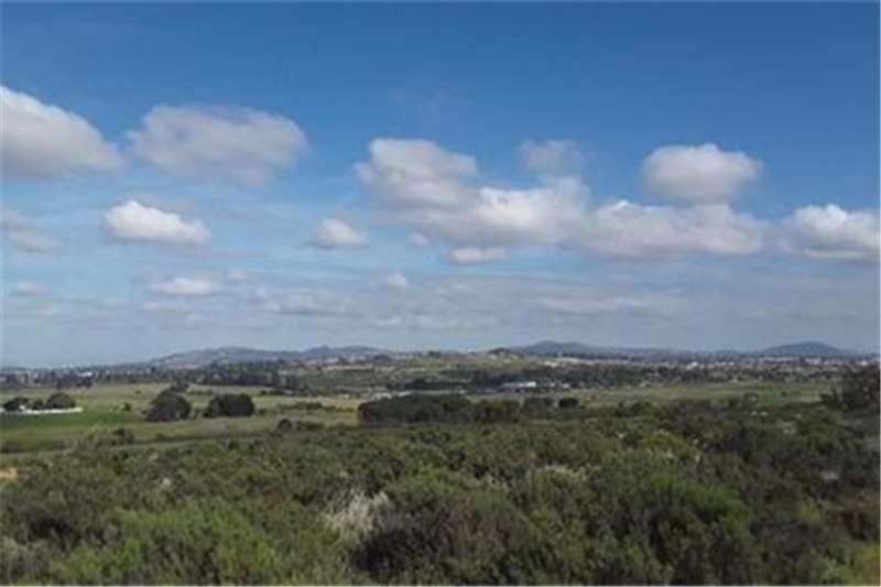 Property Farms Farm For Sale in Stellenbosch Farms