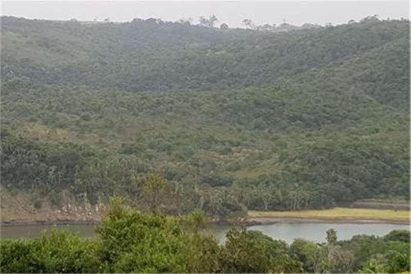 Property Farms Farm land on the Gonubie River