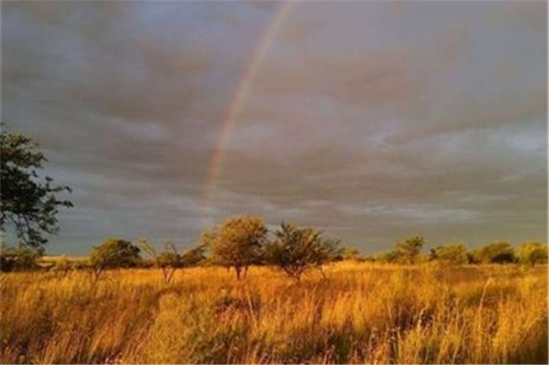 Property Farms Farms  For sale in Fochville Rural