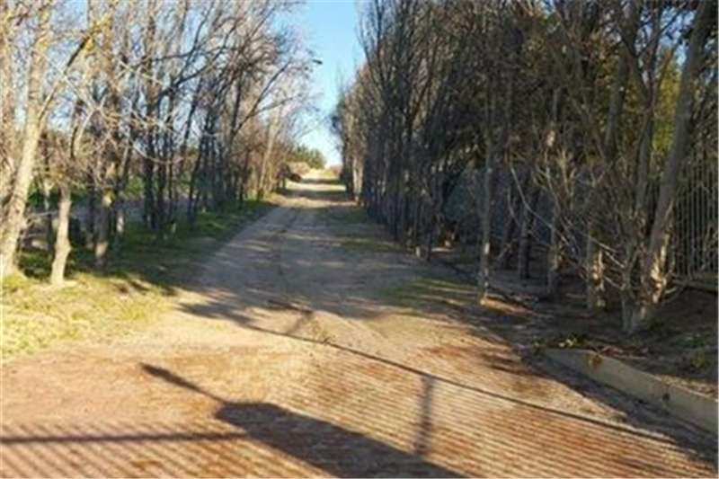 Property Farms Farms  For sale in Paarl Central