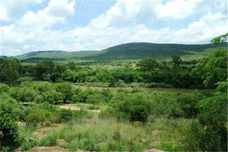 Property Farms Farms  For sale in Vredefort Rural