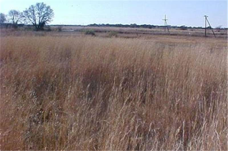 Farms Farms  For sale in Vyfhoek A H Property