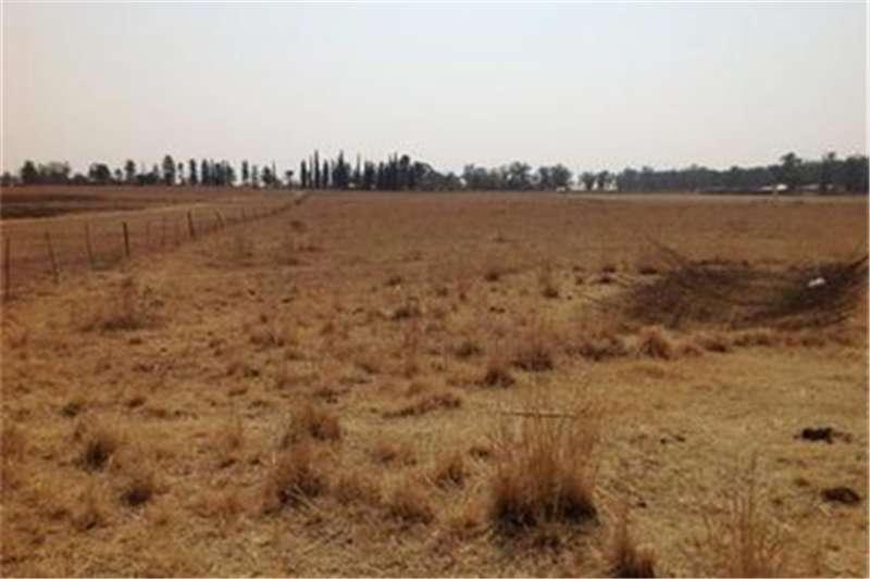 Property Farms HOMELANDS