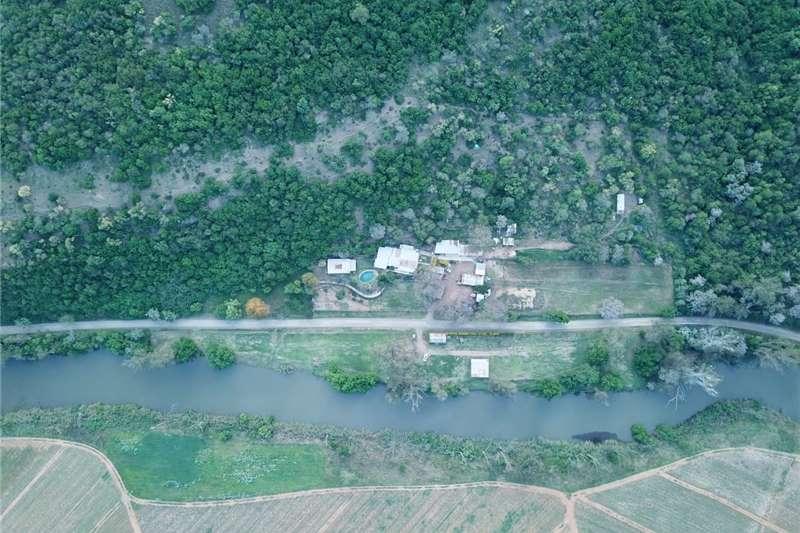 Property Farms