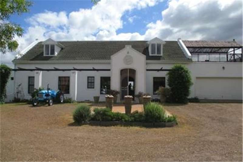 Property Farms Lifestyle property with paddocks and stables