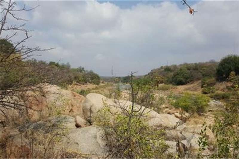 Farms Undeveloped farm on the Olifants River Property