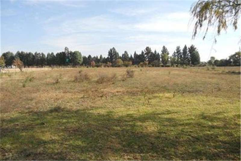 Farms Vacant holding in Vyfhoek near N12 Property