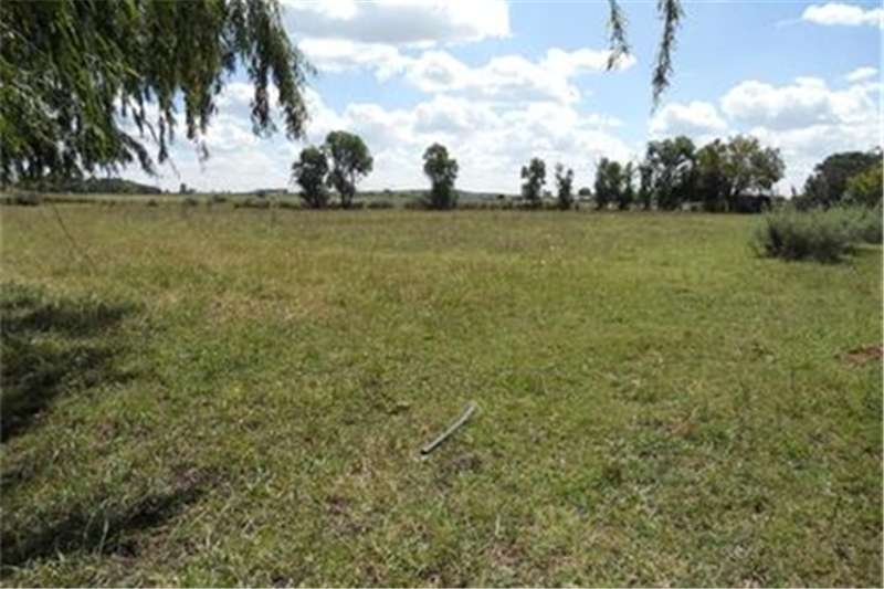 Farms Vacant land near the N12 Property