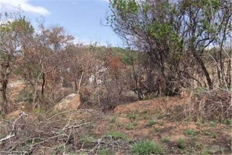 Property Vacant land 0.0 bedroomFor Sale  in Drum Rock