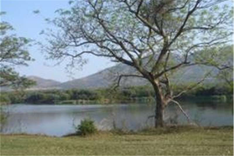 Vacant land 11 000 m2! Very large Waterfront stand. Property