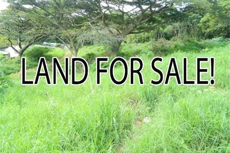 Property Vacant land 2000