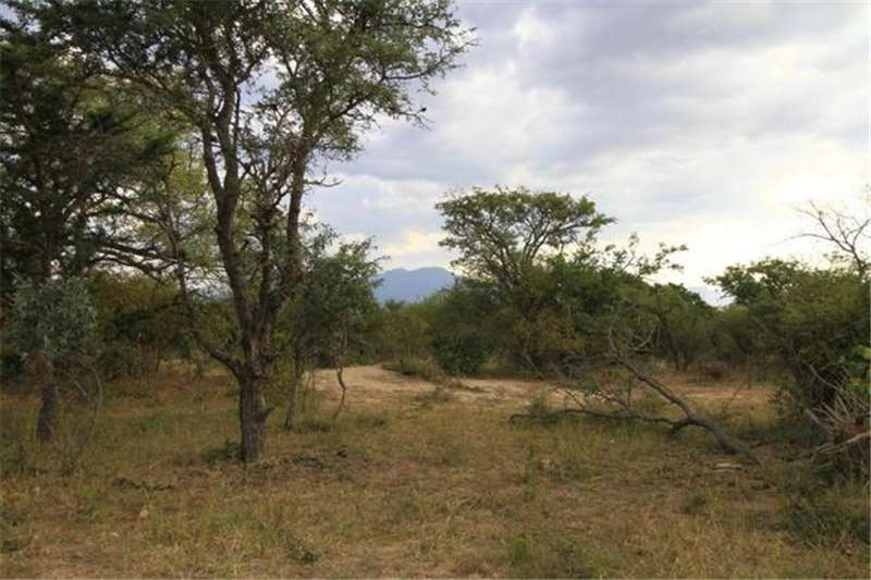Property Vacant land 2001