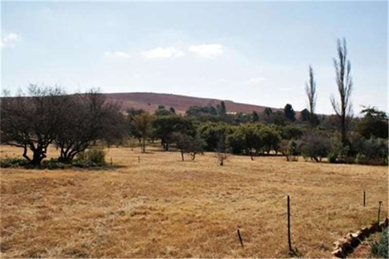 Property Vacant land 2ha Stand next to Engedi Guest Farm