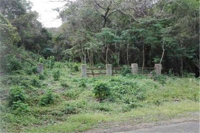Property Vacant land Blue Chip Property for the Investor !!!