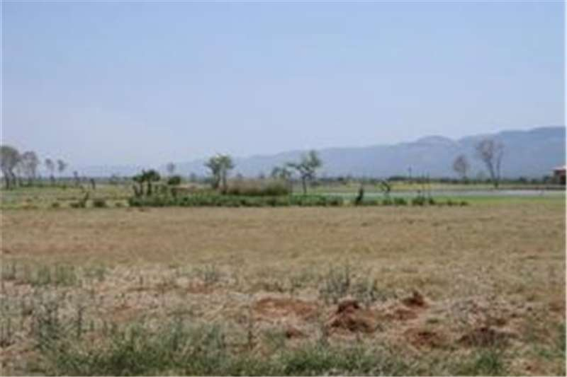 Vacant land Excellent north facing stand close to locks Property