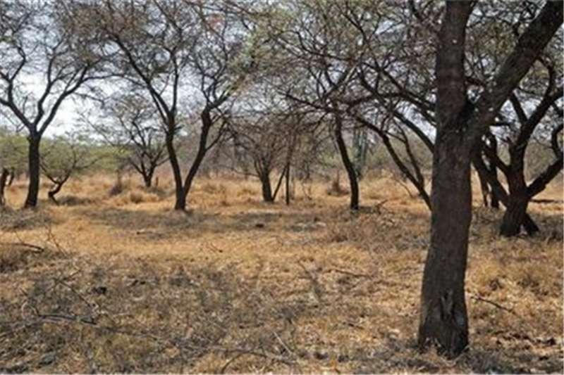Property Vacant land Farm For Sale  in Bela Bela