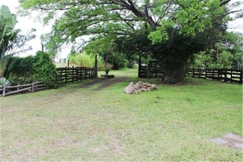 Property Vacant land FARM WITH MANY POSSIBILITIES FOR SALE IN PORT EDWA