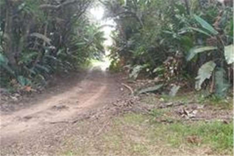 Vacant land Four stands in Trafalgar  Zoned Low Impact Property