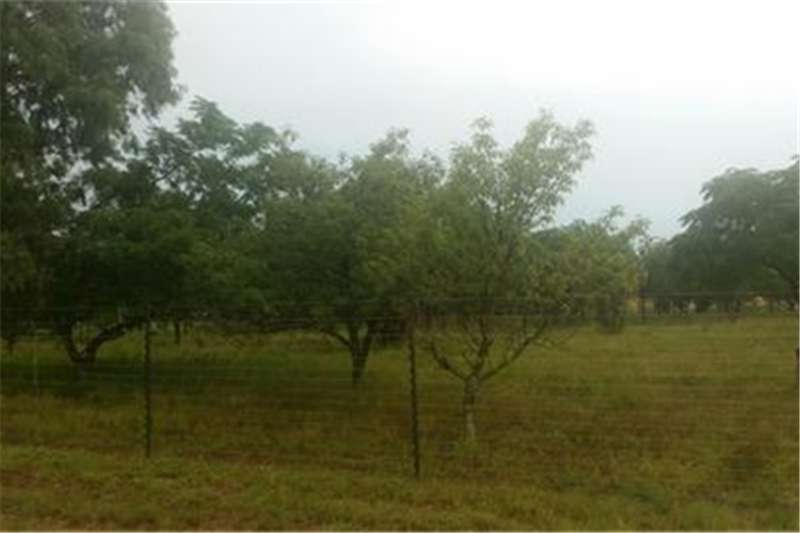 Property Vacant land Good area.