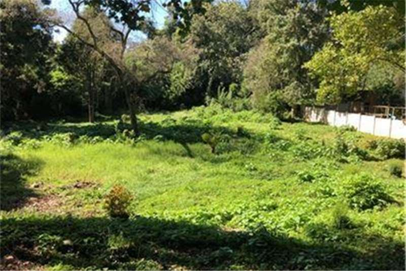 Property Vacant land Hilton