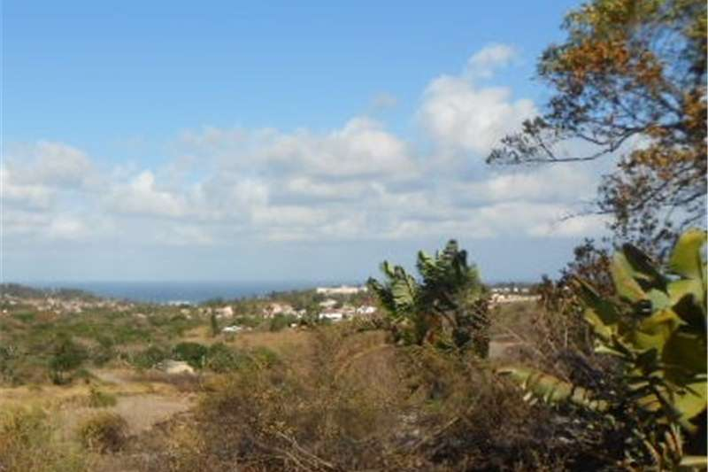 Property Vacant land