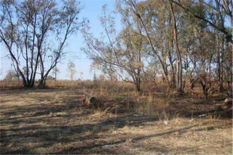 Property Vacant land INVESTMENT OF A LIFE TIME ON CULLINAN
