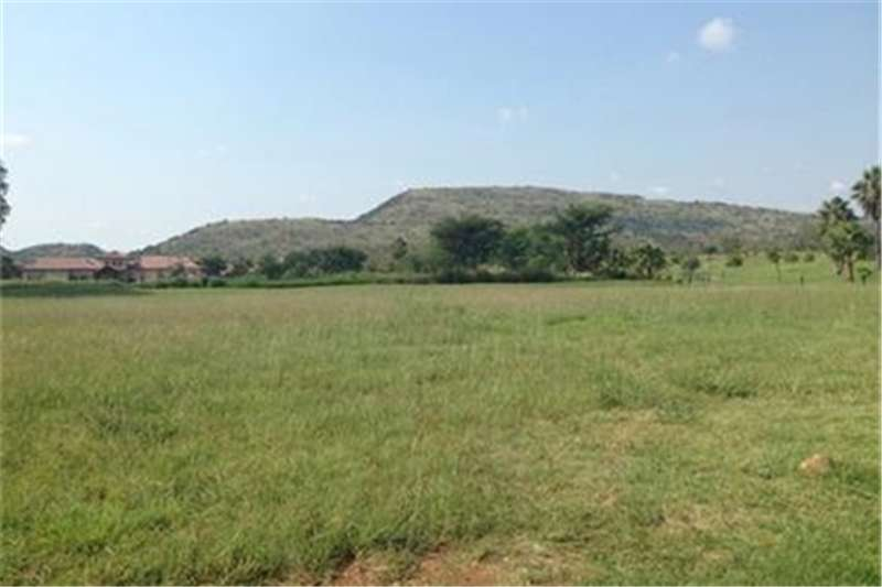 Vacant land Large stand on beautiful stream South facing Property