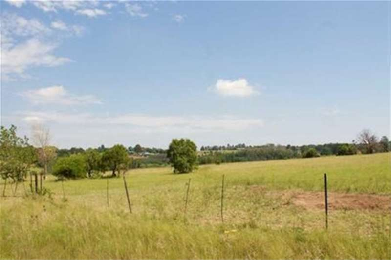 Property Vacant land Last 5 ha in the high mile of Sun Valley!