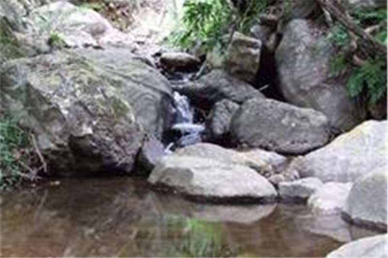 Property Vacant land Own Property in an exclusive 18,000 hectare Nature