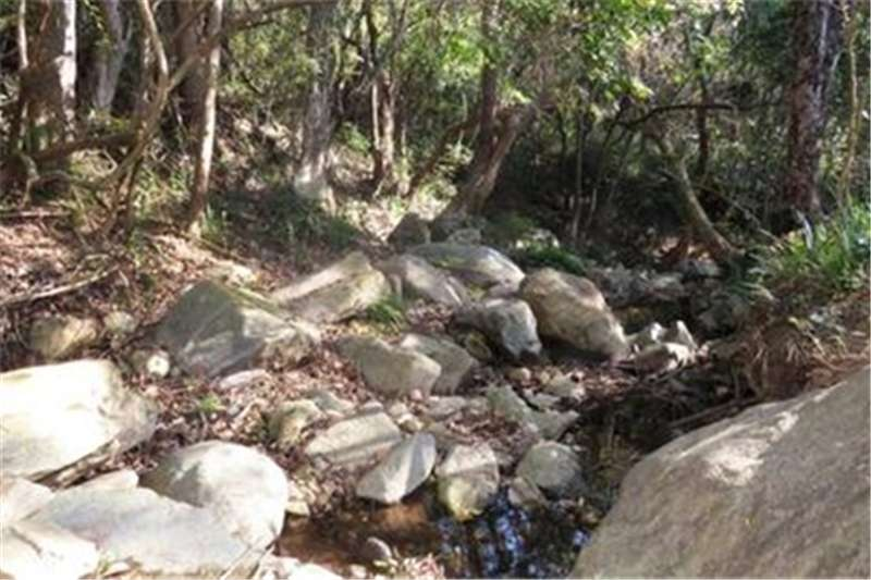Vacant land Own Property in an exclusive 18,000 hectare Nature Property