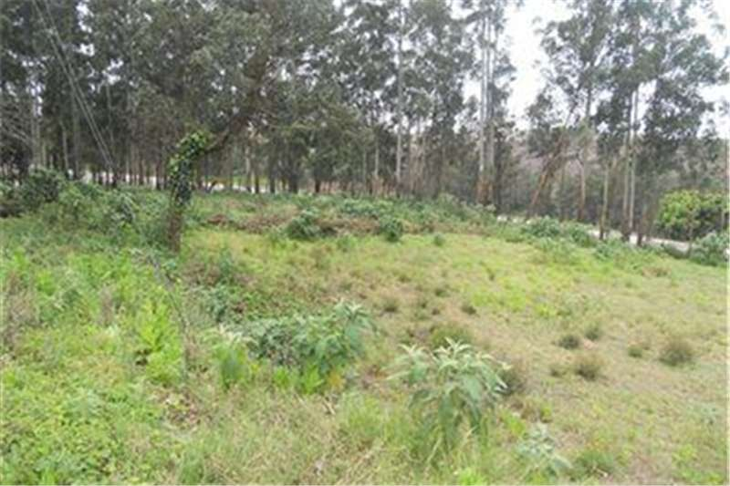Property Vacant land Prime Land in Hilton