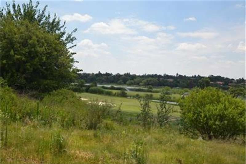 Vacant land River view stand at Heron Banks Golg and River Est Property
