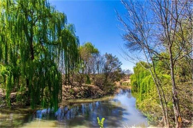 Property Vacant land Riverfront development opportunity!!