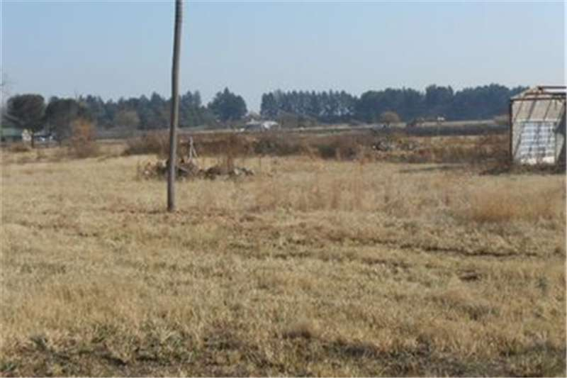 Vacant land Smallholding in the Ideal Spot. Ideal to Buy  Five Property