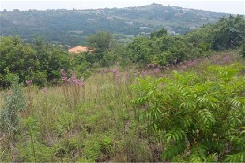 Property Vacant land Splendour land on top of the hill!