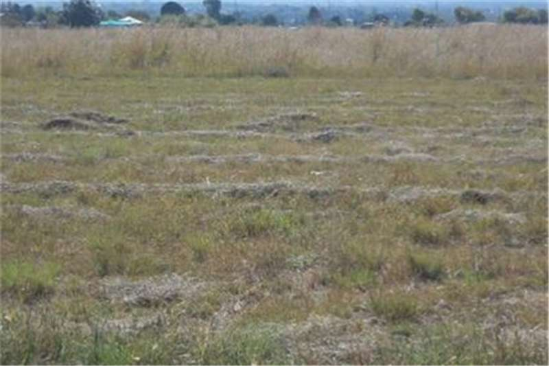 Property Vacant land Stunning Zoned Stand on the Market in Riversdale I