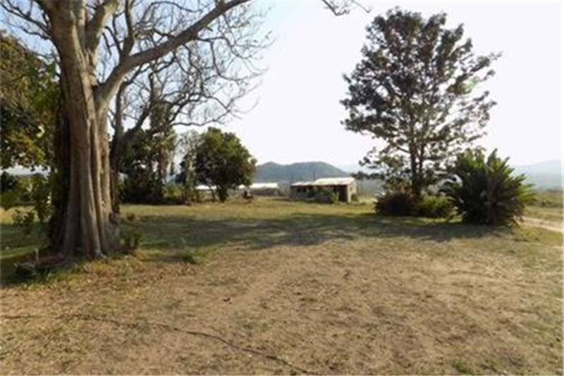 Property Vacant land Vacant Land Agricultural For Sale in KARINO