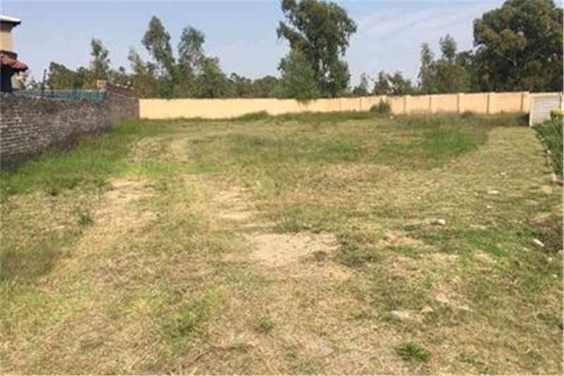 Property Vacant land Vacant Land Agricultural For Sale in SELCOURT