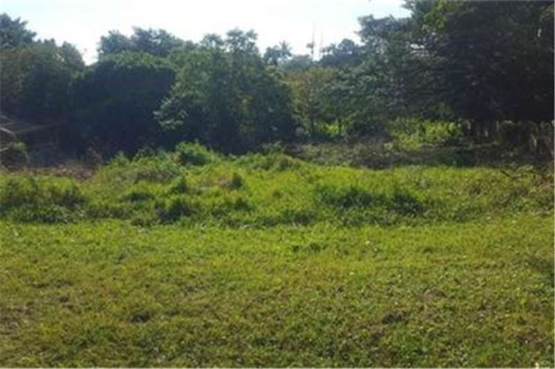 Property Vacant land Vacant Land Commercial For Sale in MEER EN SEE