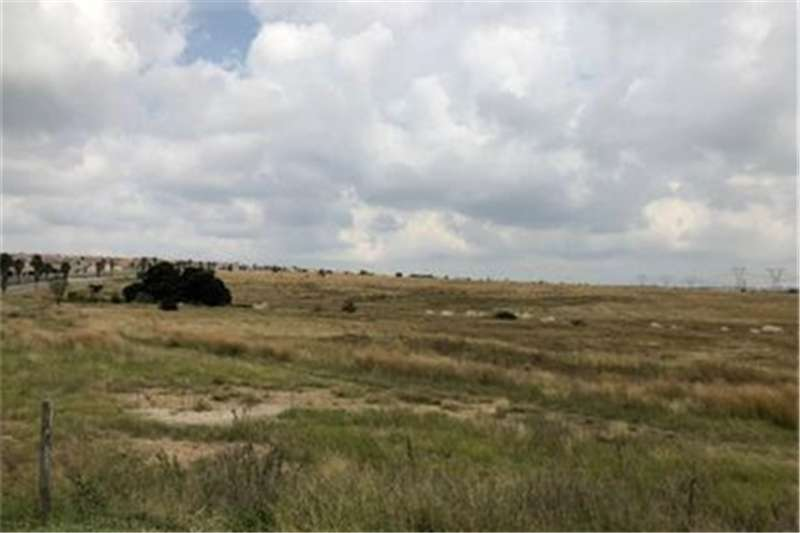 Property Vacant land Vacant Land Commercial For Sale in Samrand Busines