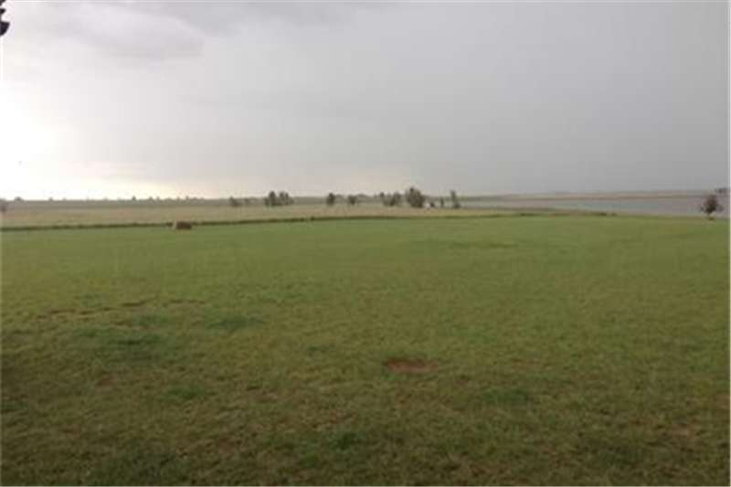 Property Vacant land Vacant Land For Sale  in Vaal Dam
