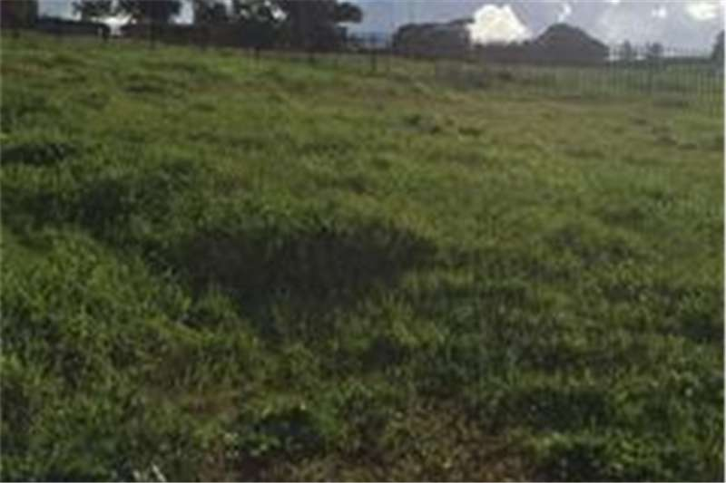 Property Vacant land Vacant land in Glen Lily