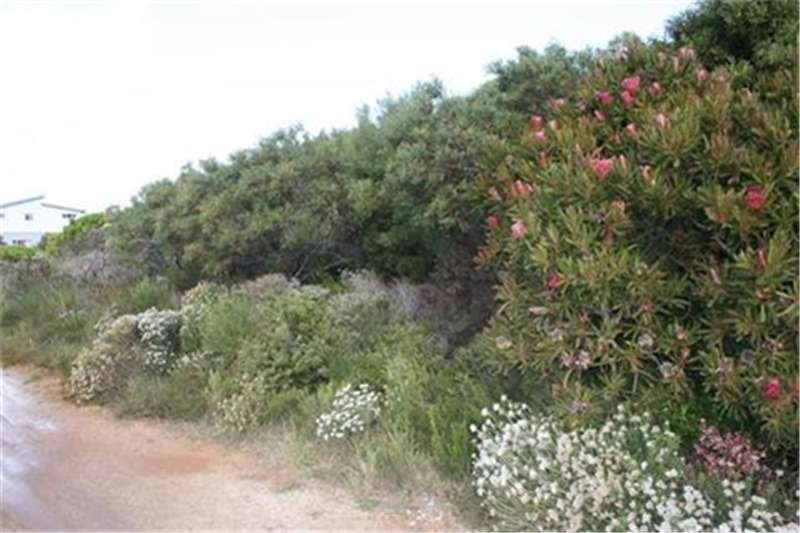 Property Vacant land Vacant Land Residential For Sale in BETTYS BAY