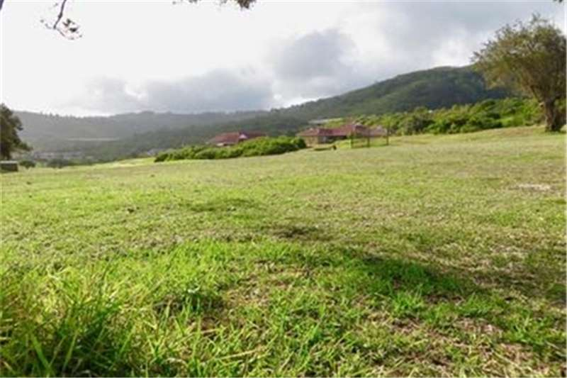 Property Vacant land Vacant Land Residential For Sale in Dolphin Creek