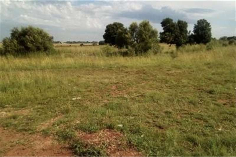 Property Vacant land Vacant Land Residential For Sale in GELUKSDAL