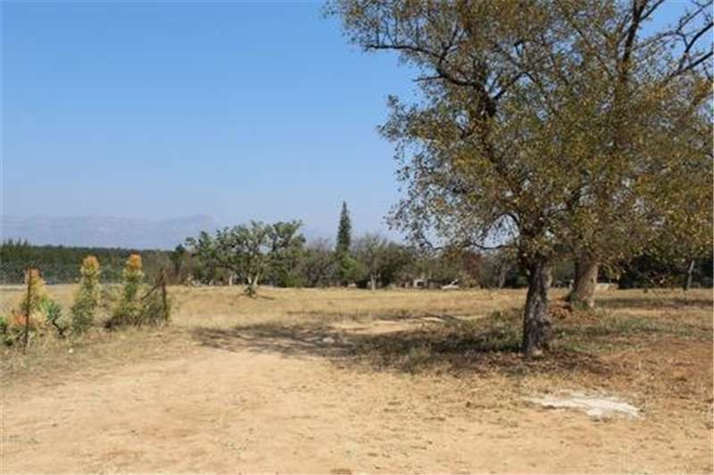 Property Vacant land Vacant Land Residential For Sale in HOEDSPRUIT