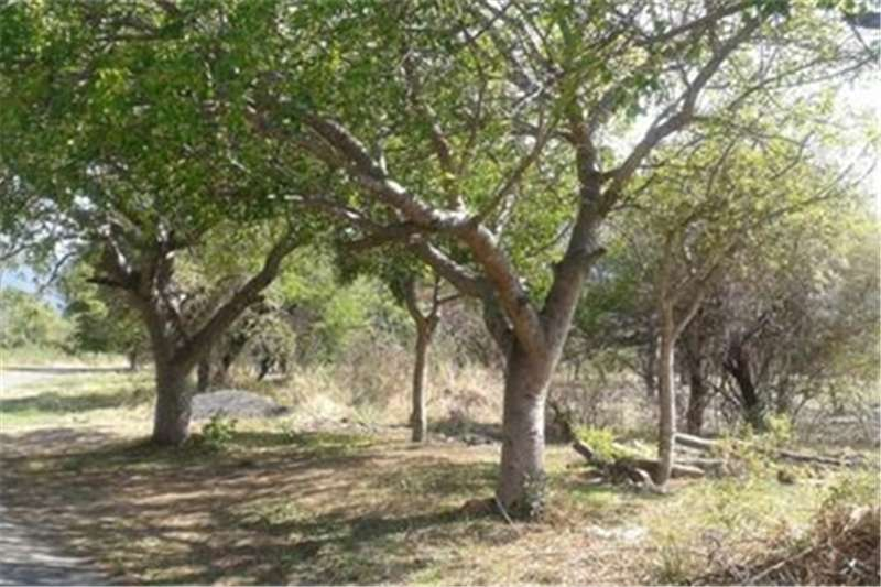 Property Vacant land Vacant Land Residential For Sale in KAMPERSRUS
