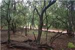 Vacant land Vacant Land Residential For Sale in KRANSPOORT Property