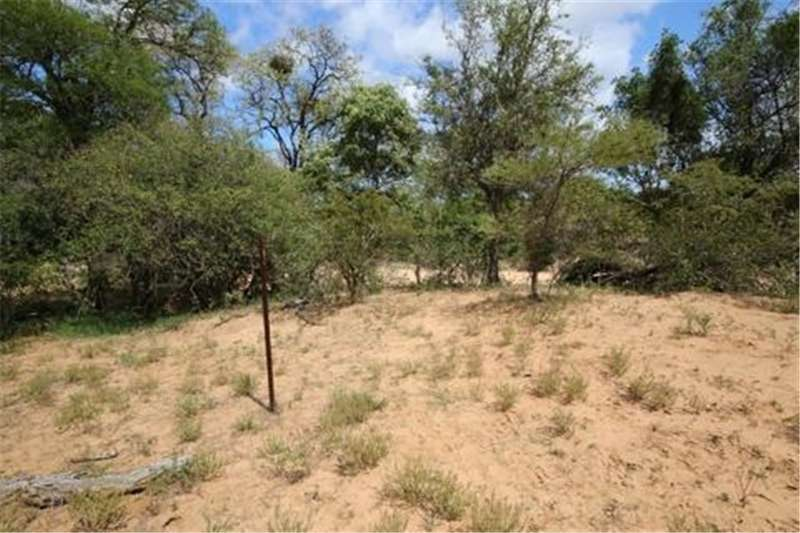Property Vacant land Vacant Land Residential For Sale in RAPTORS VIEW